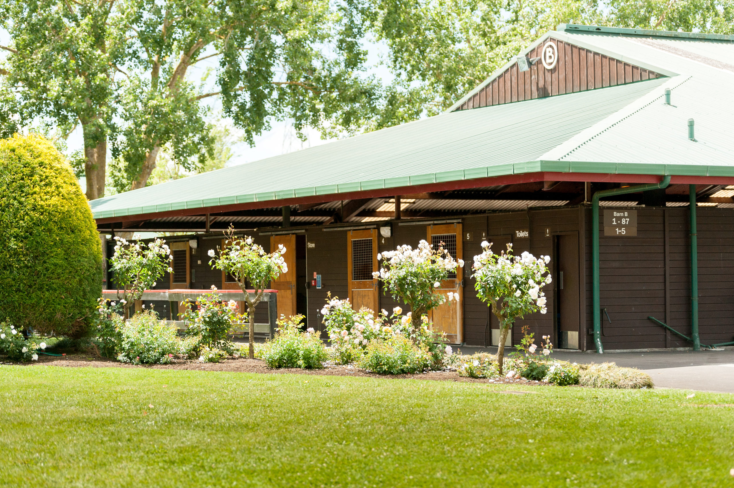 Stables, gardens, roses (1)
